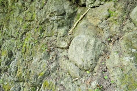 一色 枕状溶岩