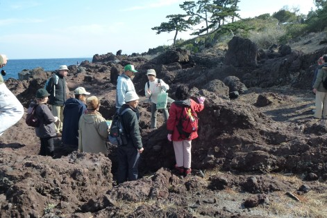 2014年度「伊豆を学ぶ 伊豆半島ジオパークを知る」受講者募集