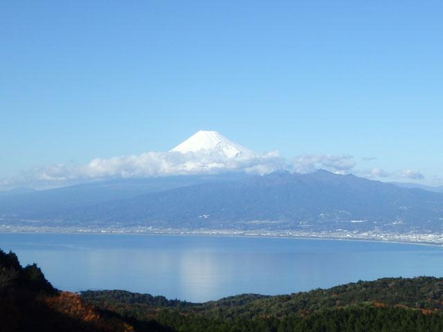 達磨山から見た富士山