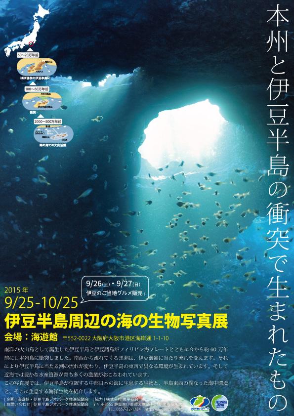 伊豆半島周辺の海の生物写真展