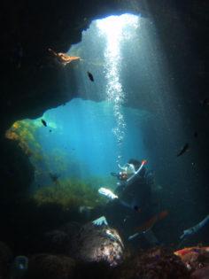 写真展「これが伊豆の海だ!」